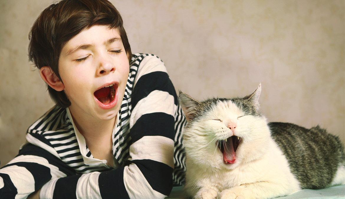Let's yawn, friends!Scientists have found that it is easier to catch yawning from a closed one
